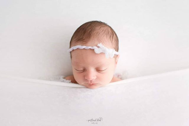 All tucked in.. goodnight.. sweet dreams  Tieback & Outfit: @lbuprops  #newbornphoto #photography #newbornphotography #newbornbaby #portland #newbornphotographer #baby #newbornprops #pdx #babygirl #portlandfamilyphotographer #newbornposing #portlandnewbornphotographer #familyphotographypdx #photo #newbornlove #newbornphotographyprops #babyboy #photographylovers #photographer #maternity #babyphotography #newbornpics #oregon #newborns #mom #marines #sweetbaby #familyphotos