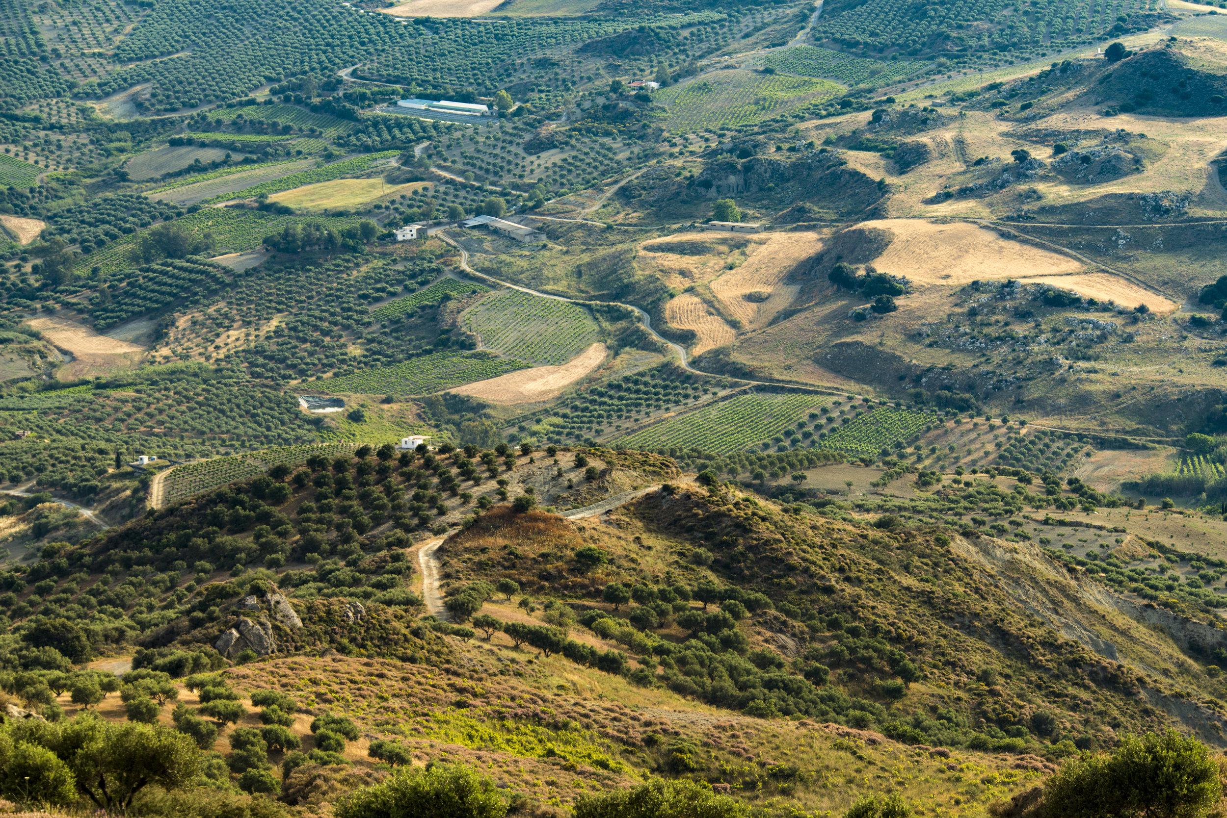HILLSIDE WALKING TOURS  Mountain & Hillside Views • Off Road
