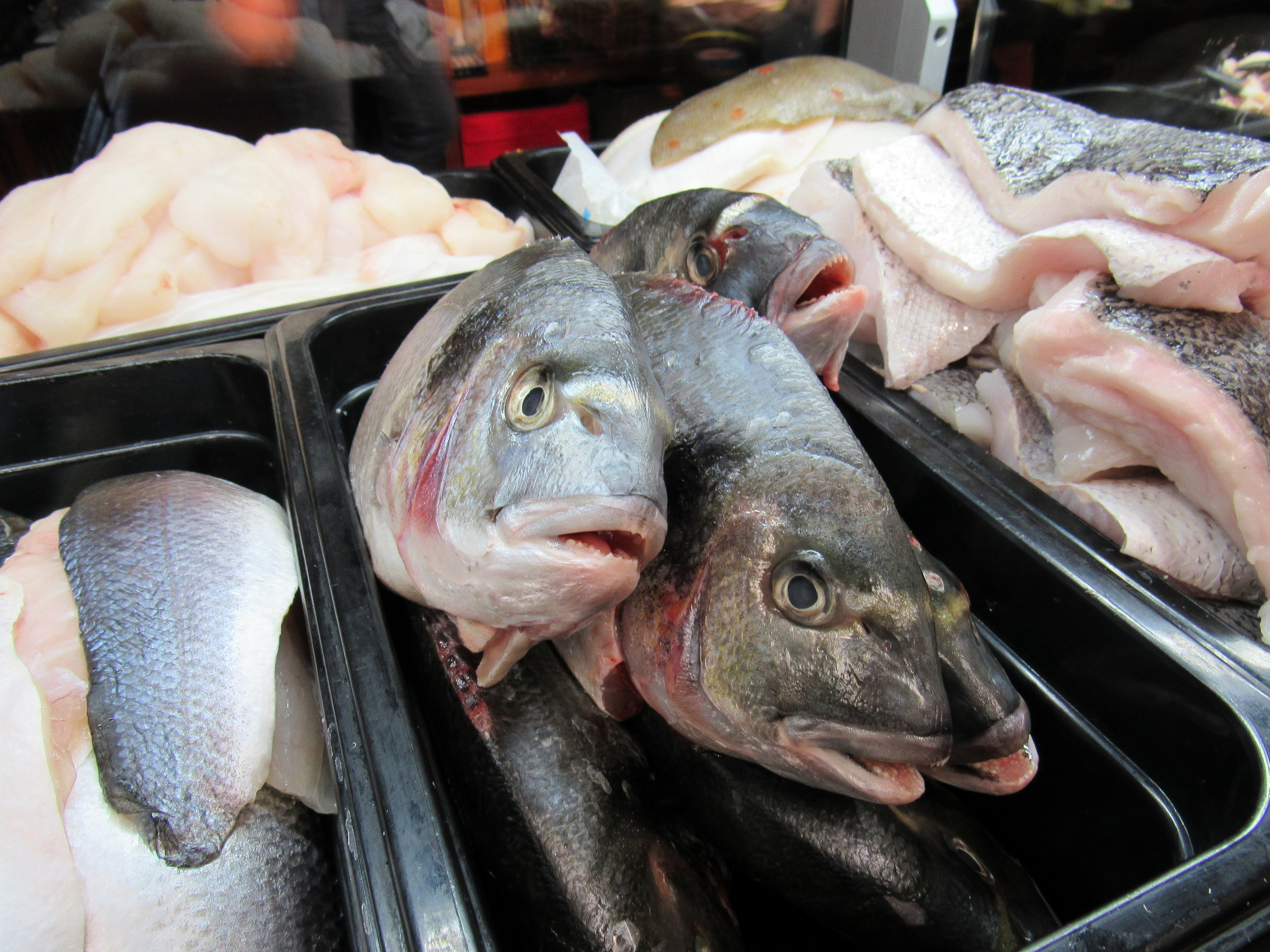 fresh fish in howth
