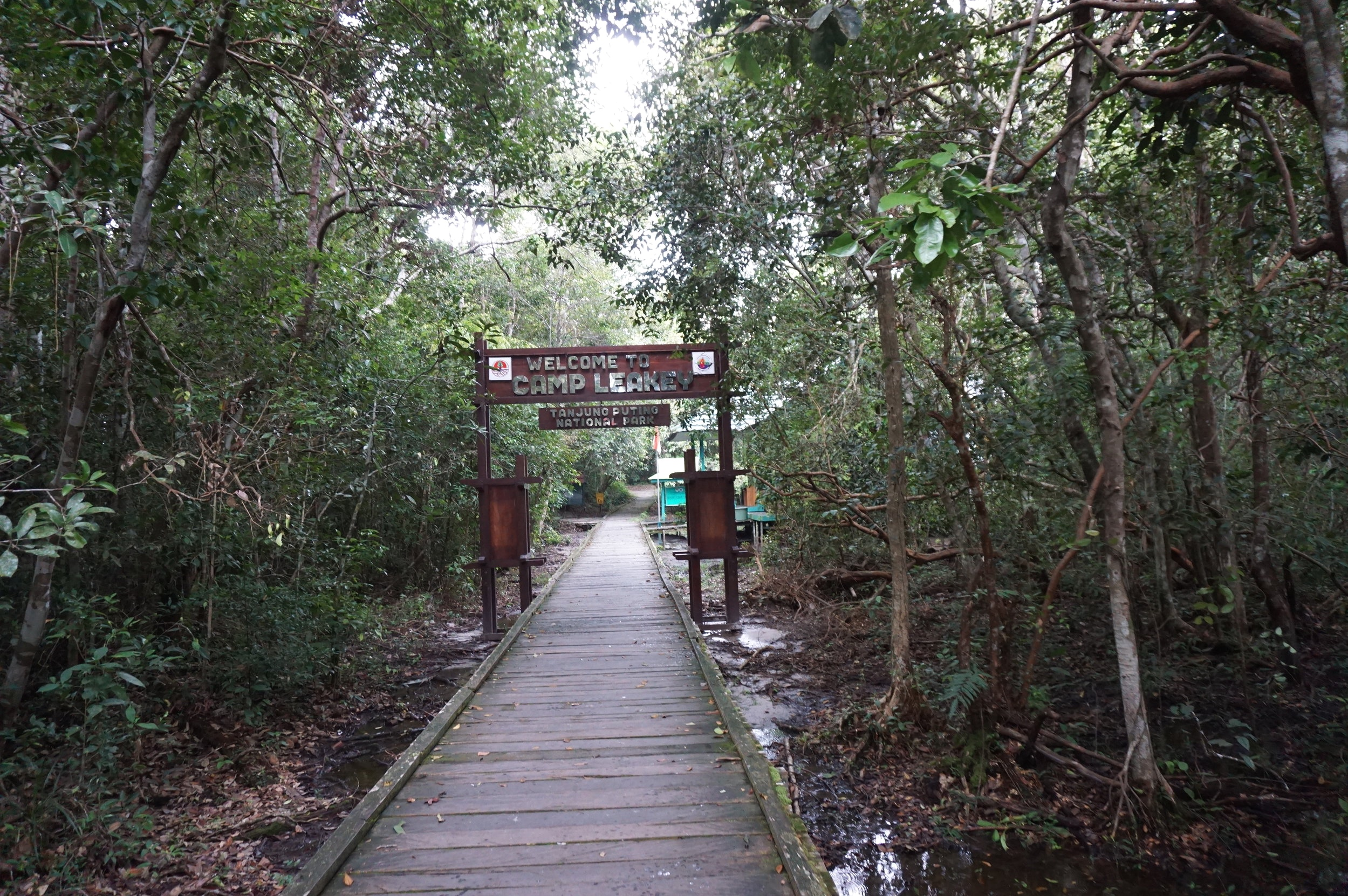 Camp Leakey entrance gate