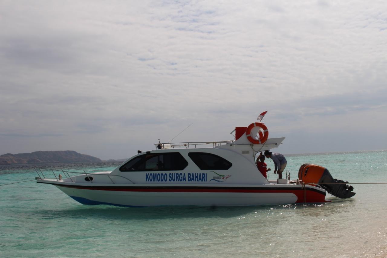 Speedboat Komodo 2.jpeg