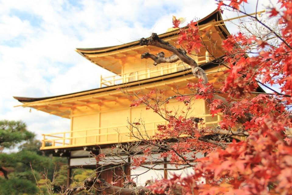 Kinkakuji temple -