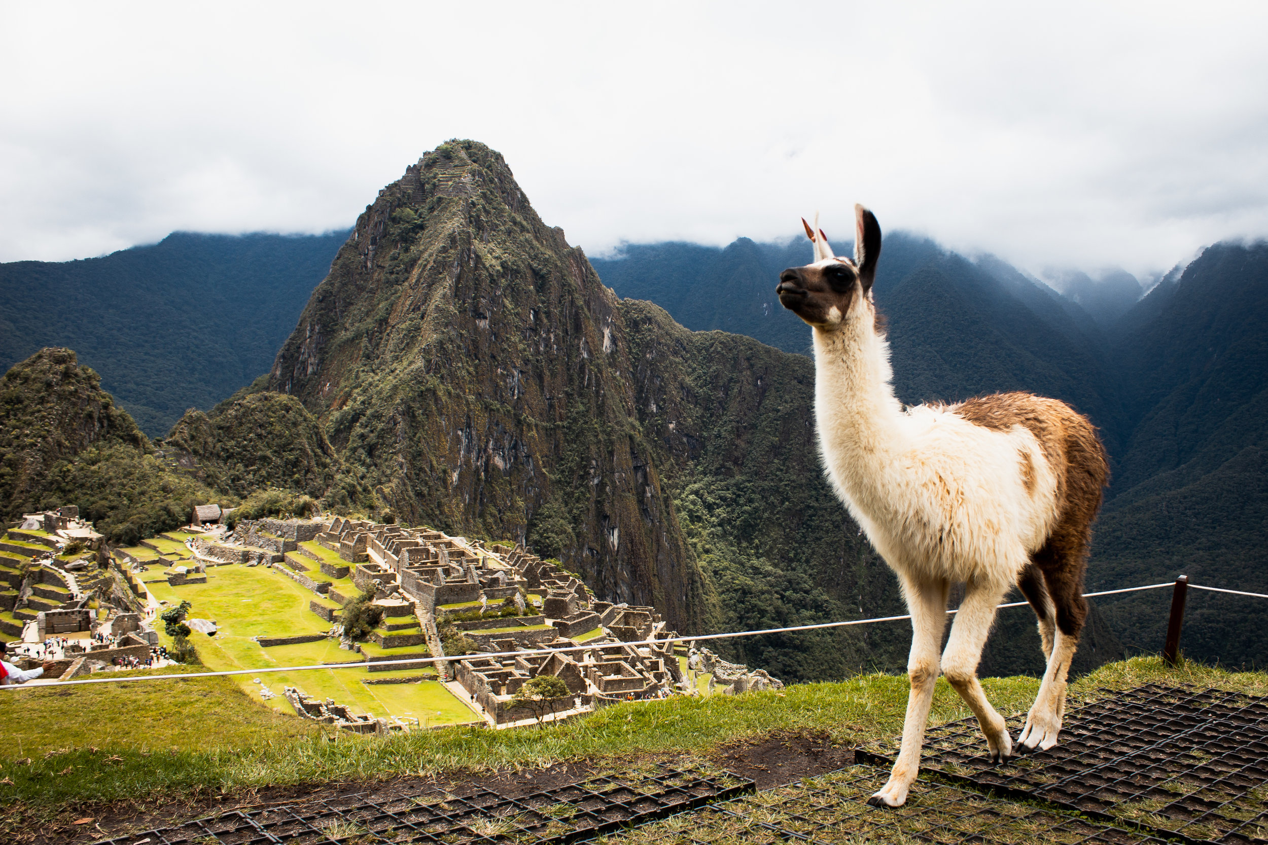 GAP Year Brazil - Peru - How about spending half the year volunteering in Peru, and the other half in Brazil? Make the most out of your GAP Year with this amazing opportunity to discover and make a positive impact in two completely different, yet both fascinating, cultures in South America! LEARN MORE!