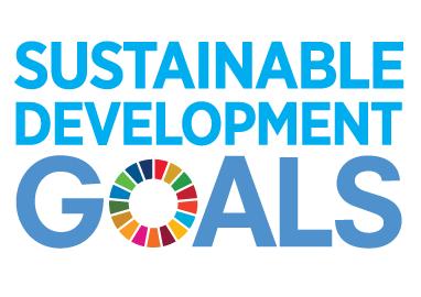 E_SDG_logo_No UN Emblem_square_rgb.png