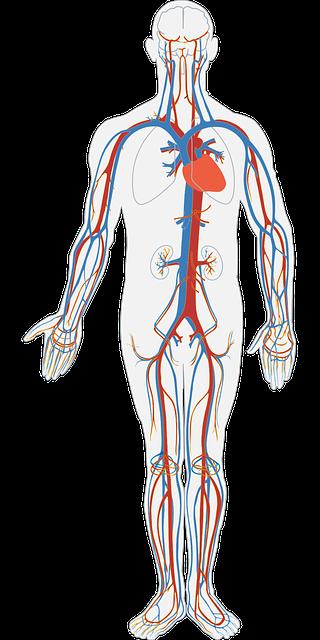 Forebygg hjerte og kar sykdommer