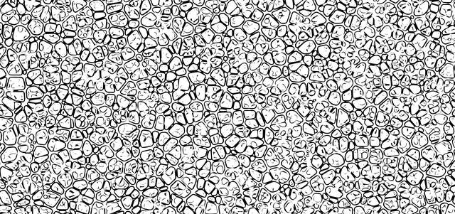 cellulær junk