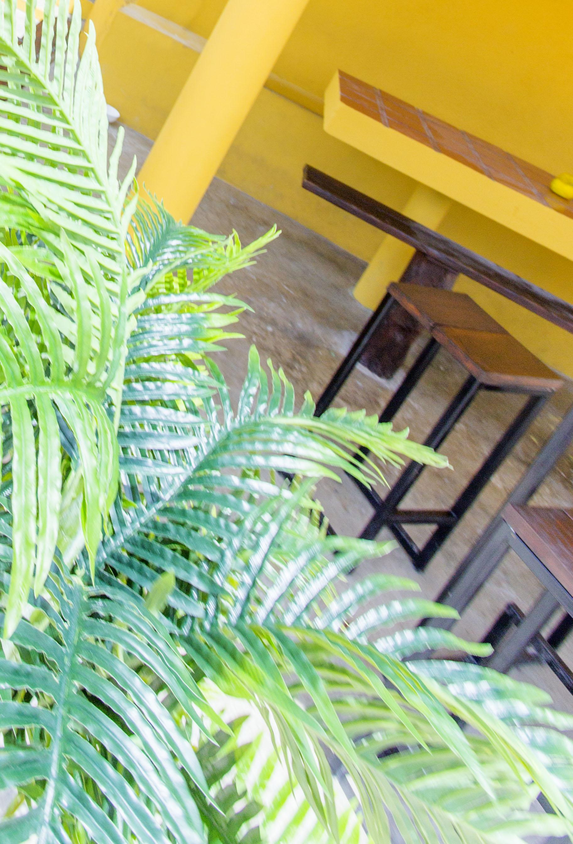 StageDesk-Curaçao-Stagehuis-BergAltena-Pelikaan-huis14.jpg