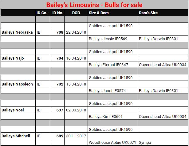 Baileys bulls for sale August 2019.jpg