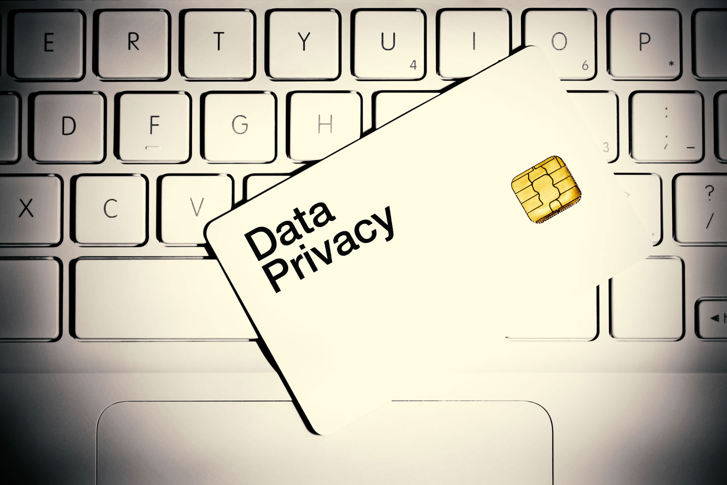 SI_Data-Privacy_banner.jpg