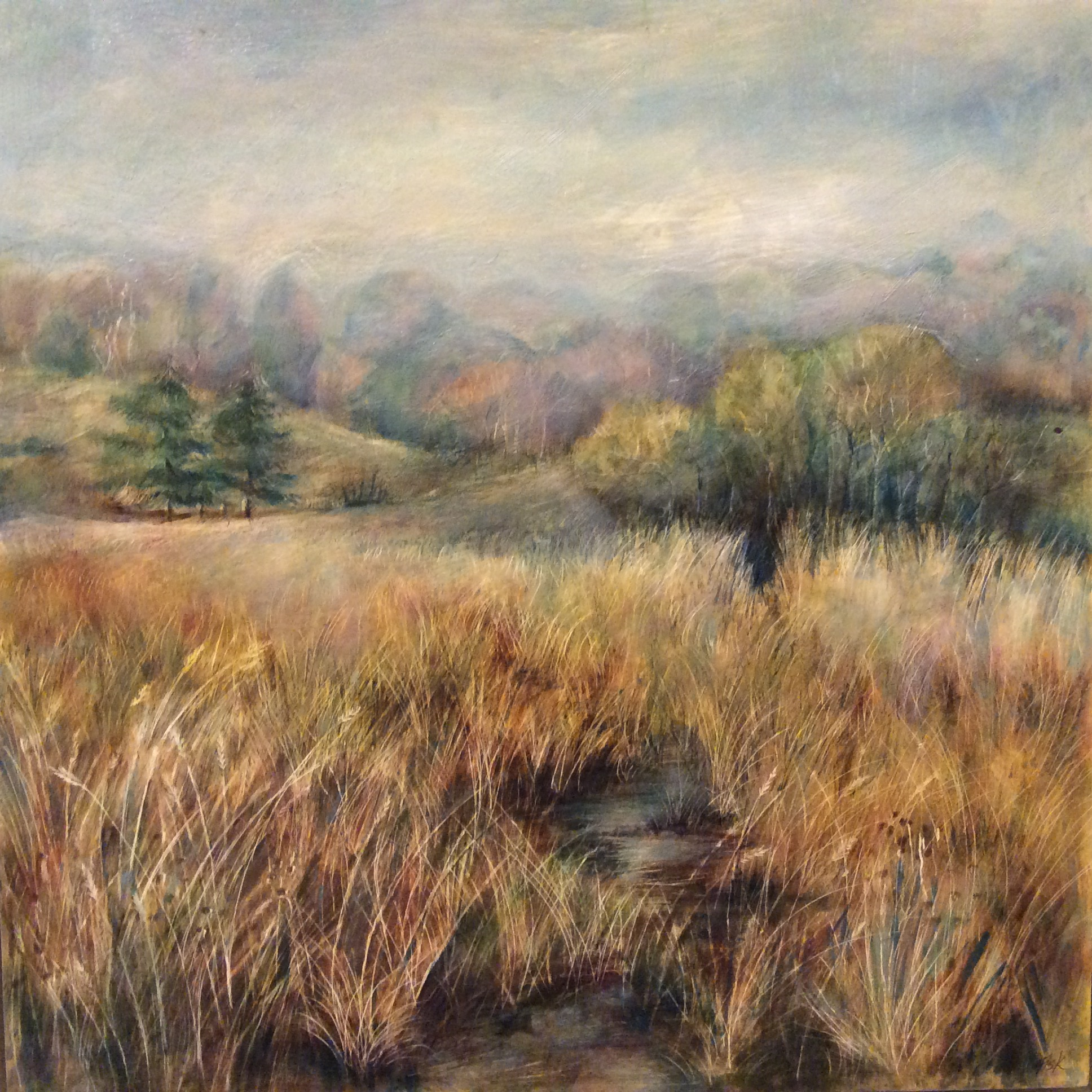 Rugged pathway.      sold