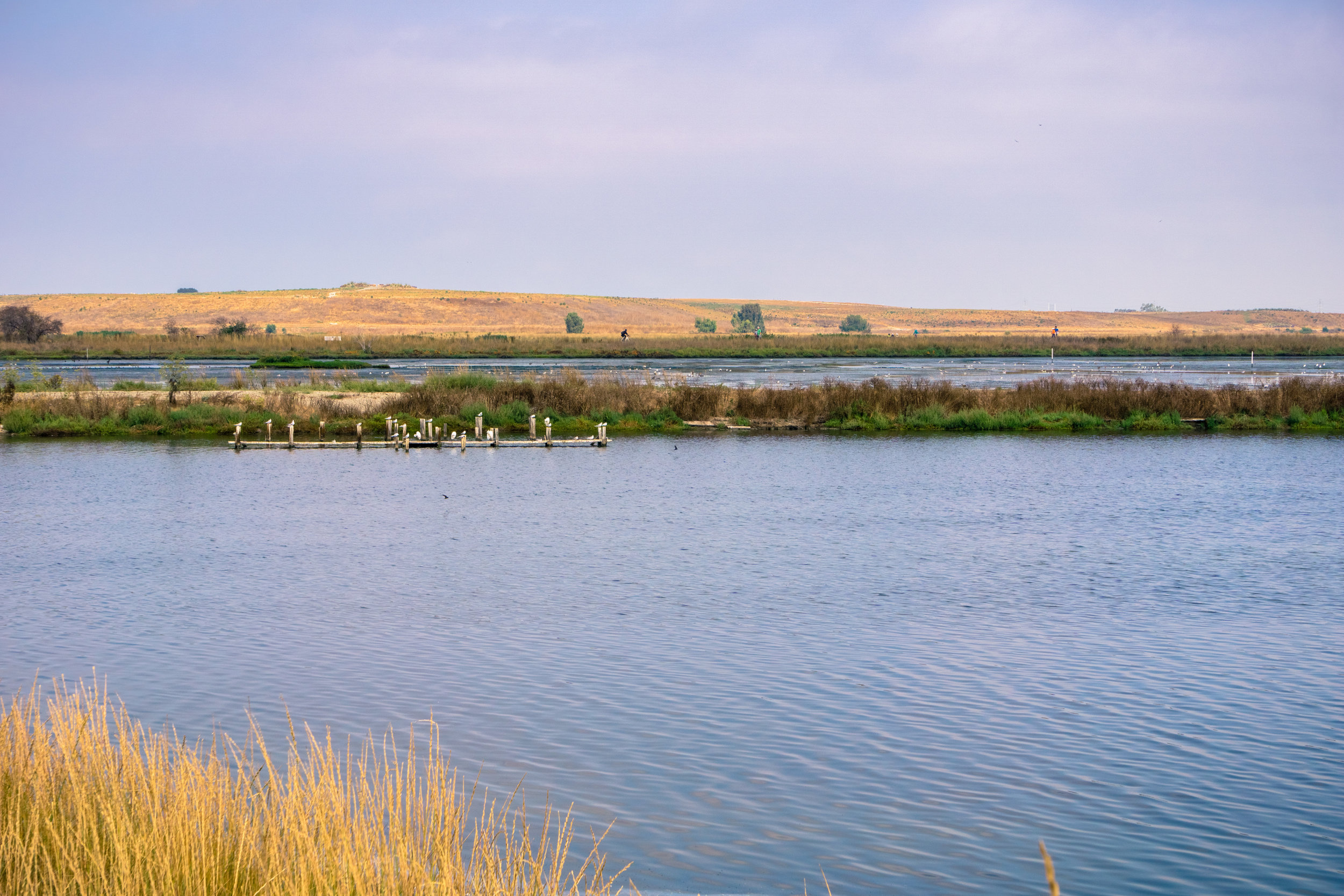 Closed landfill near a pond