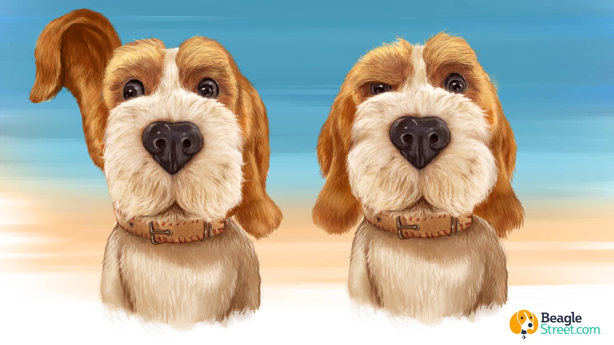 Beagle_Character_Design_1.jpg