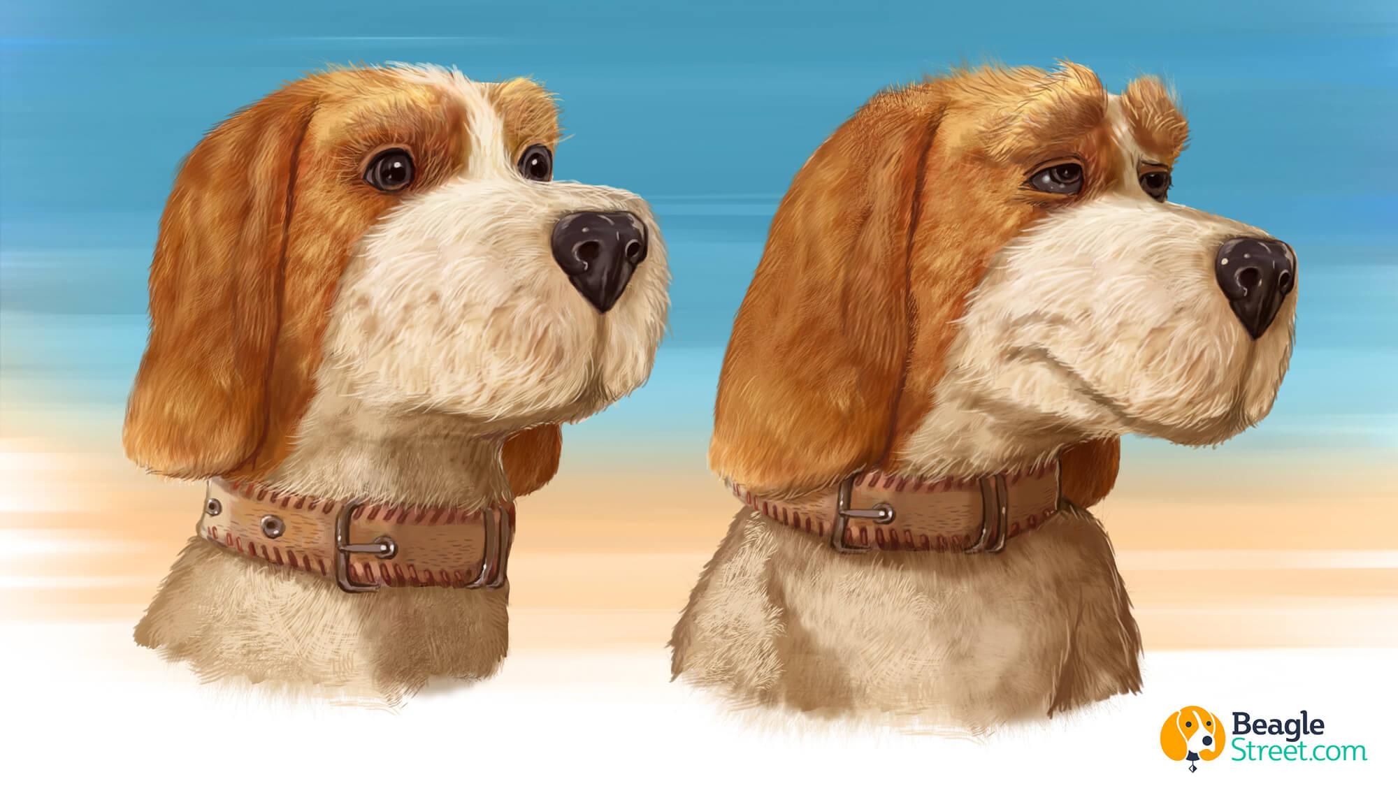 Beagle_Character_Design_2.jpg