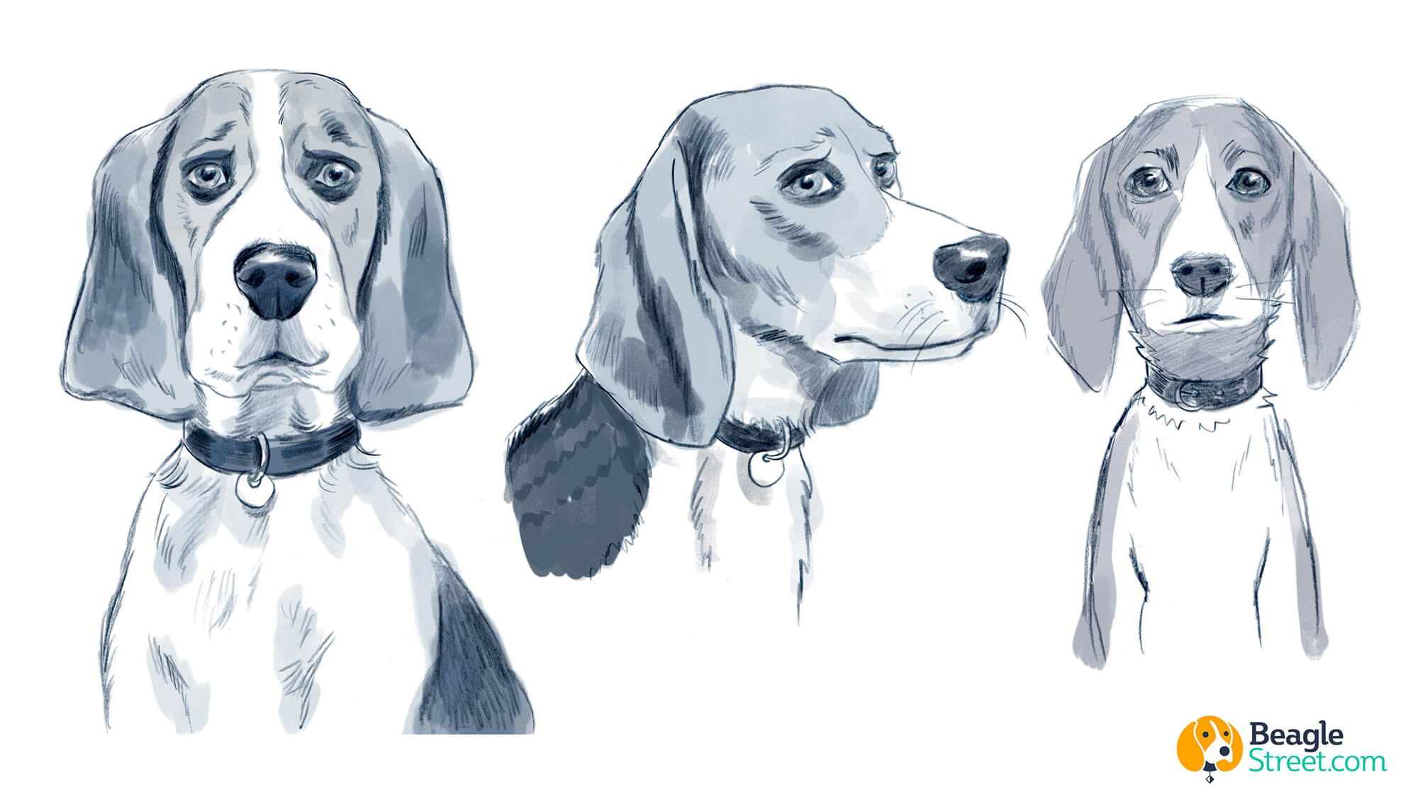 Beagle_Character_Design_3.jpg