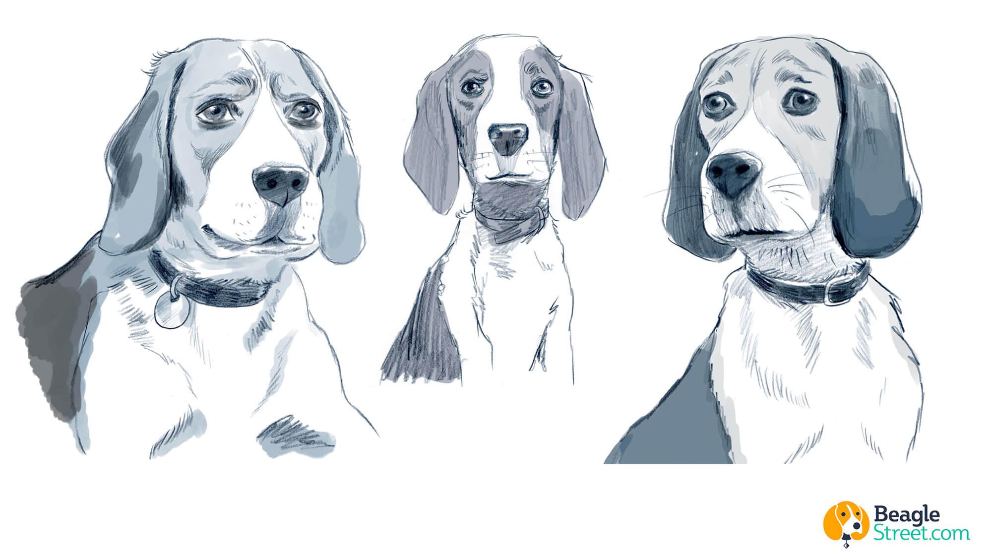 Beagle_Character_Design_4.jpg