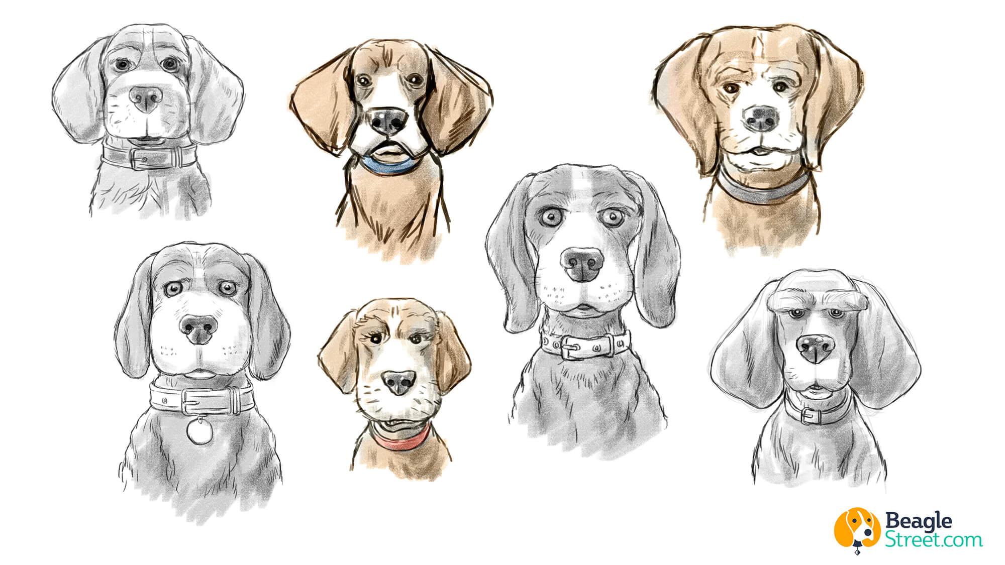 Beagle_Character_Design_5.jpg