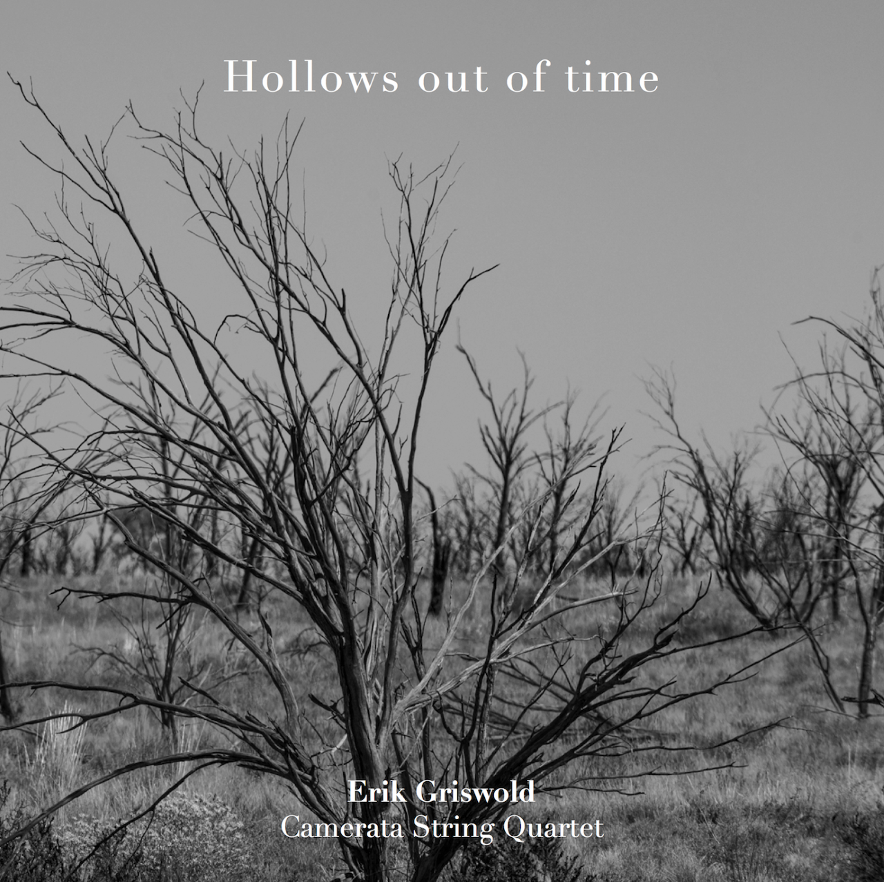 https://harriganslanecollective.bandcamp.com/album/hollows-out-of-time