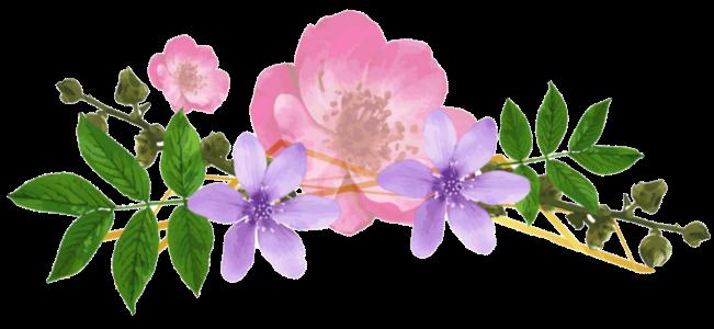 flowerpng.png