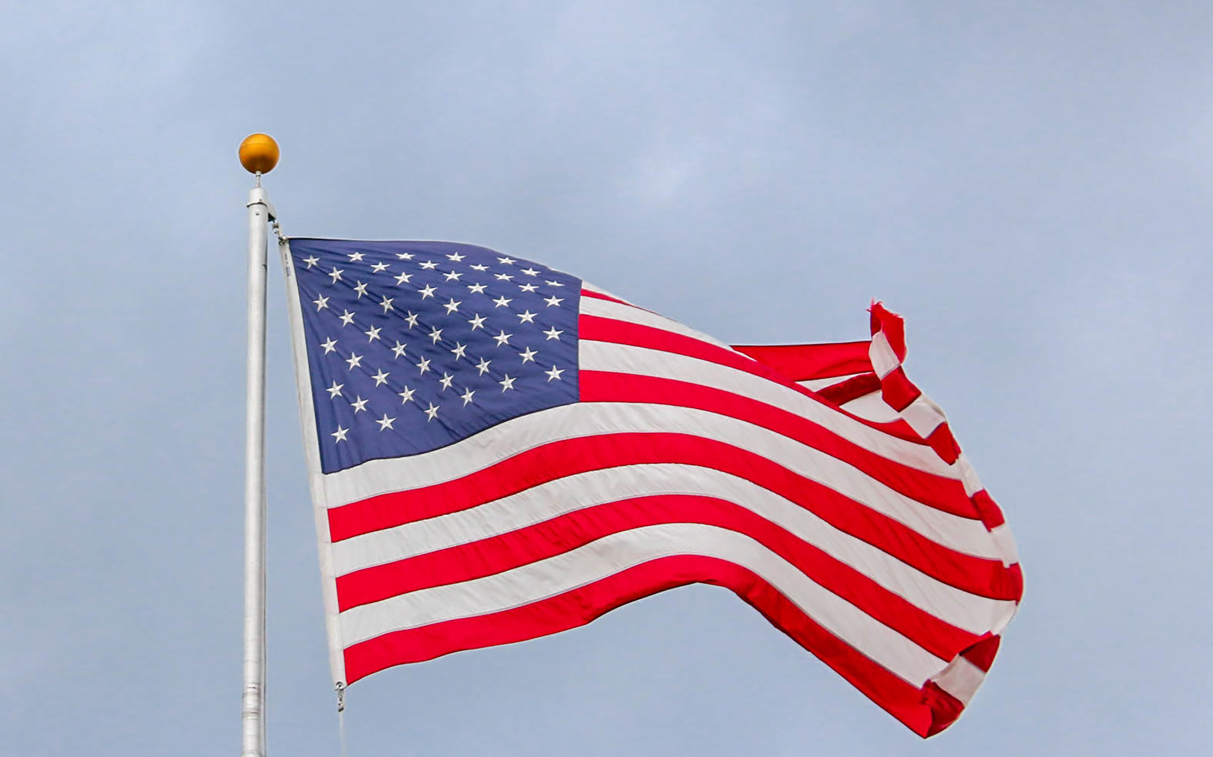 Flag and Flagpole - $10,000