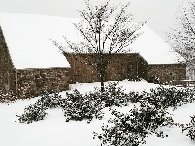 Snow day here on the farm! As much as I love the warm weather, the snow is always so beautiful.
