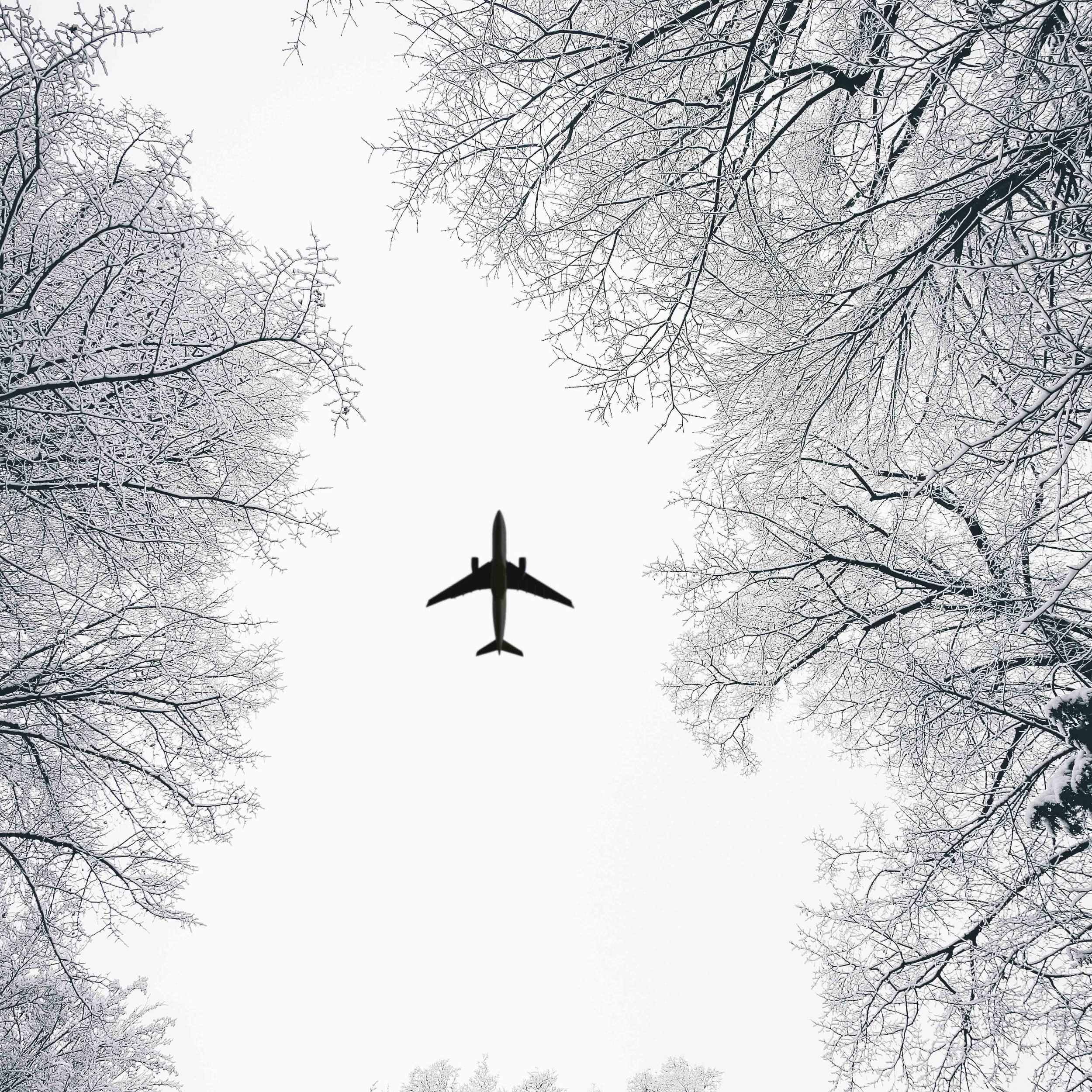 aircraft-black-and-white-cold-1867001.jpg