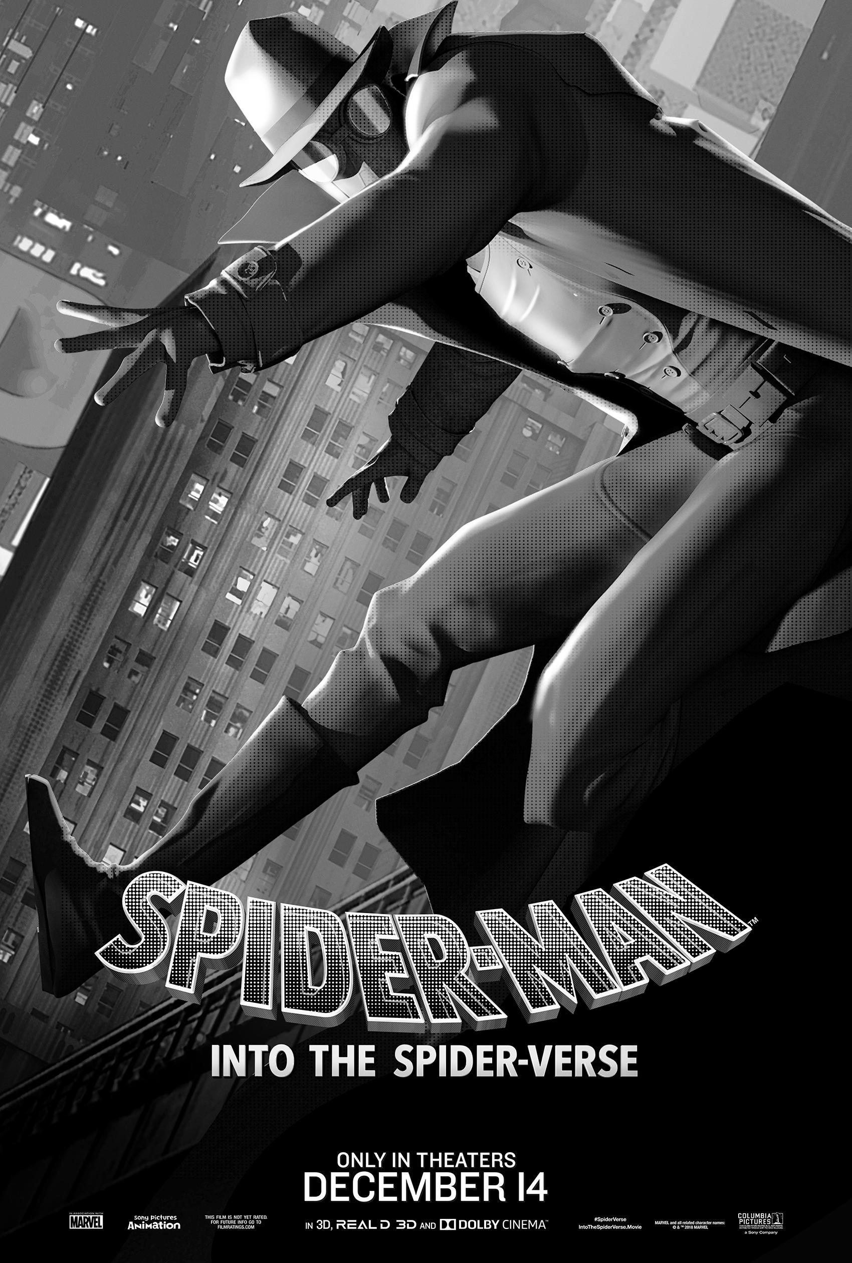 spider noir.jpg
