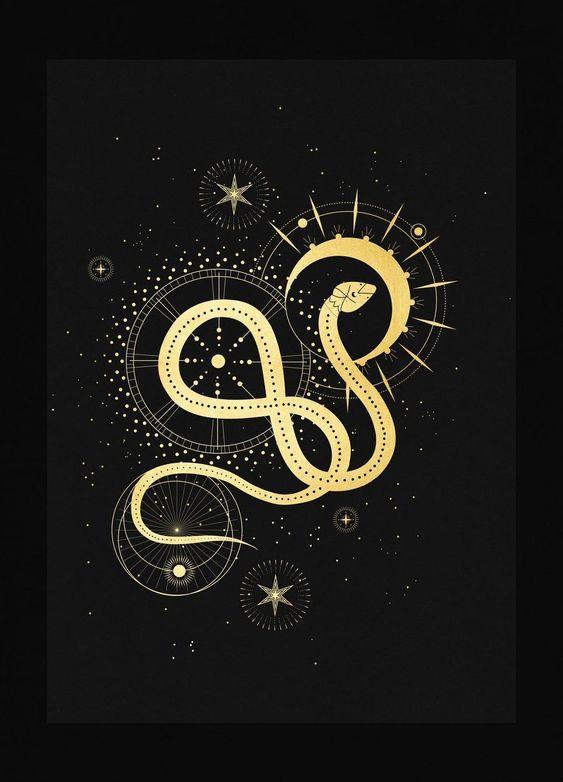 snake card.jpg