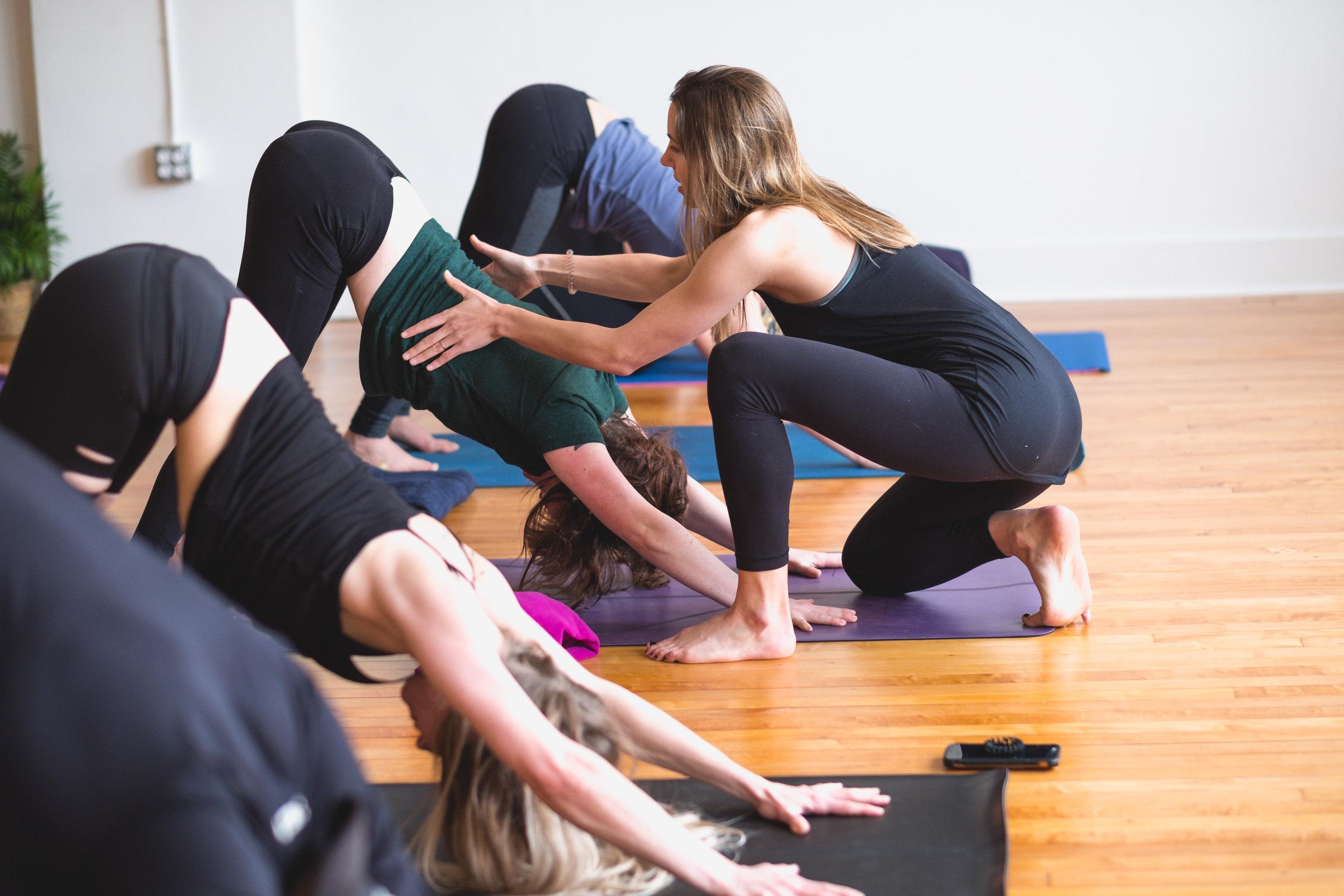 Fresh Coast Yoga Houghton downdog