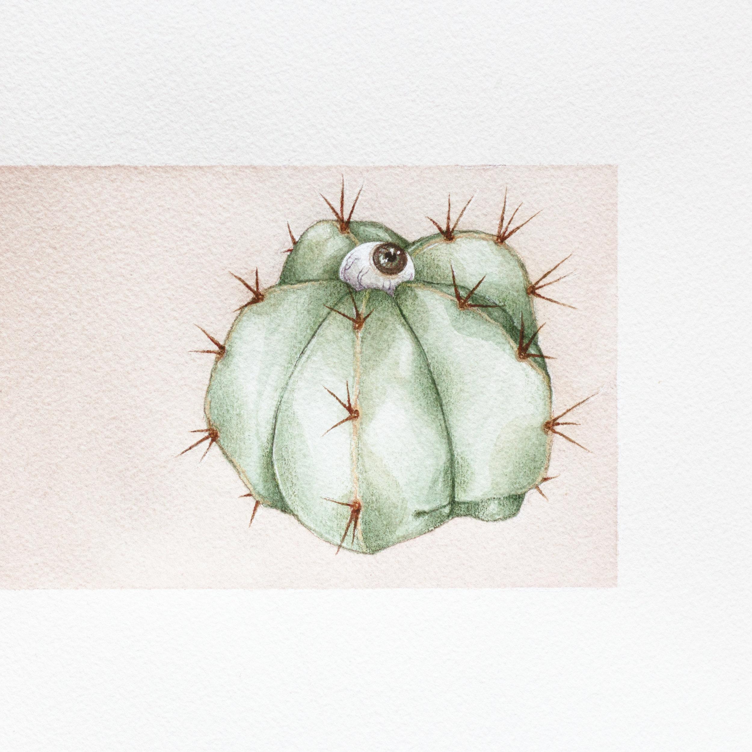 painting-eye cacti.jpg