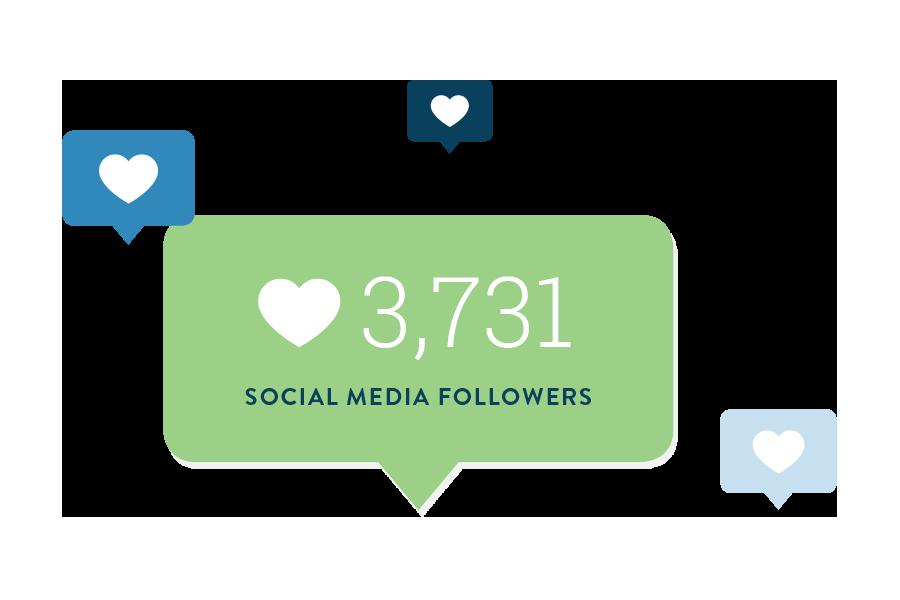 Loeys-Dietz-Syndrome-Foundation_Social-Media-Followers.png