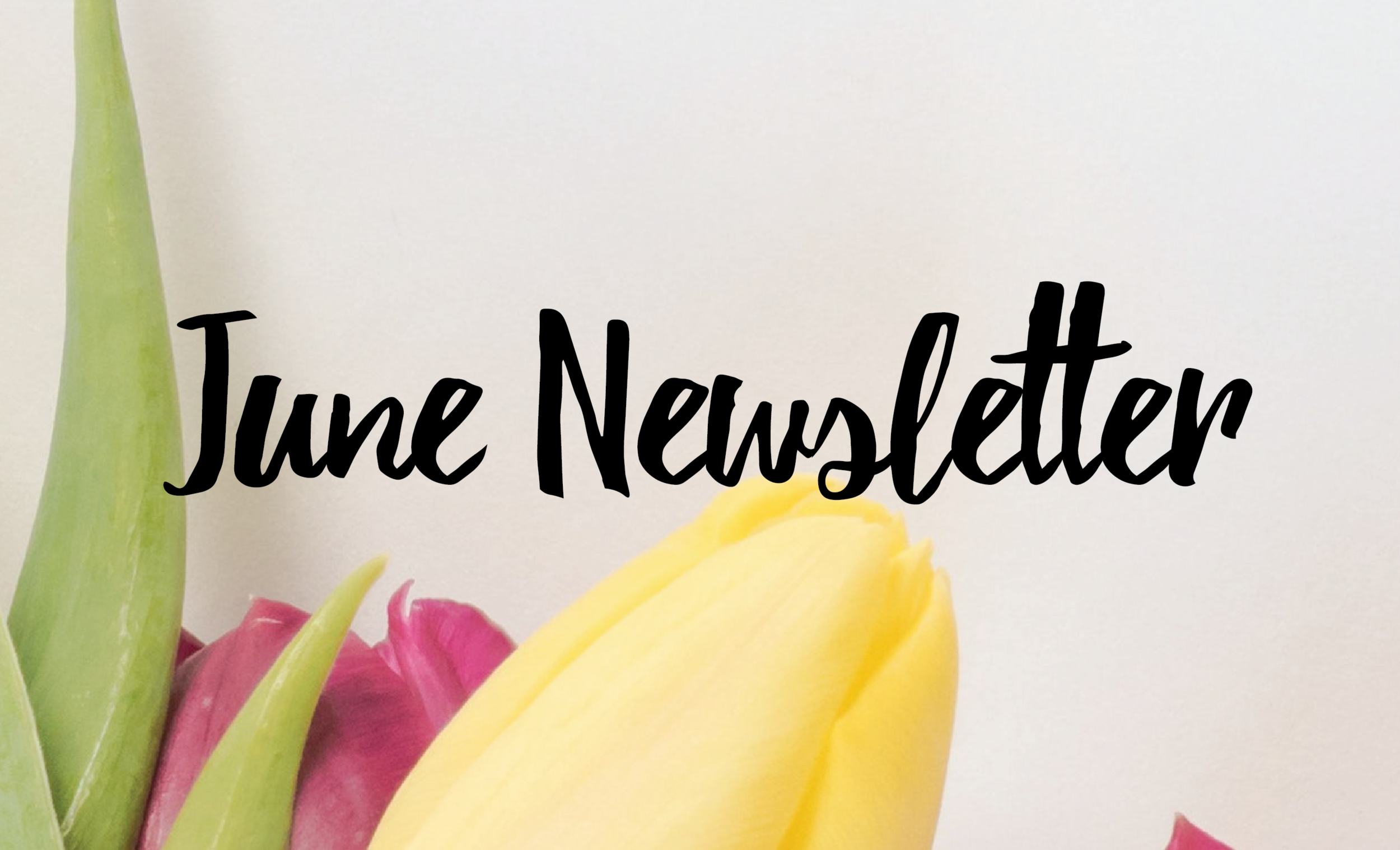 june newsletter, academic alliance in dermatology, tampa dermatology, tampa dermatologist, dermatologist in tampa
