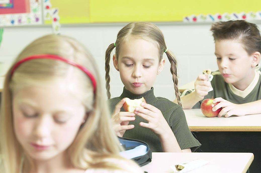 - Según las escuelas de los condados de Winston-Salem y Forsyth, aproximadamente 33,000 los niños registrados en las escuelas son elegibles para recibir comida gratis o a bajo costo.