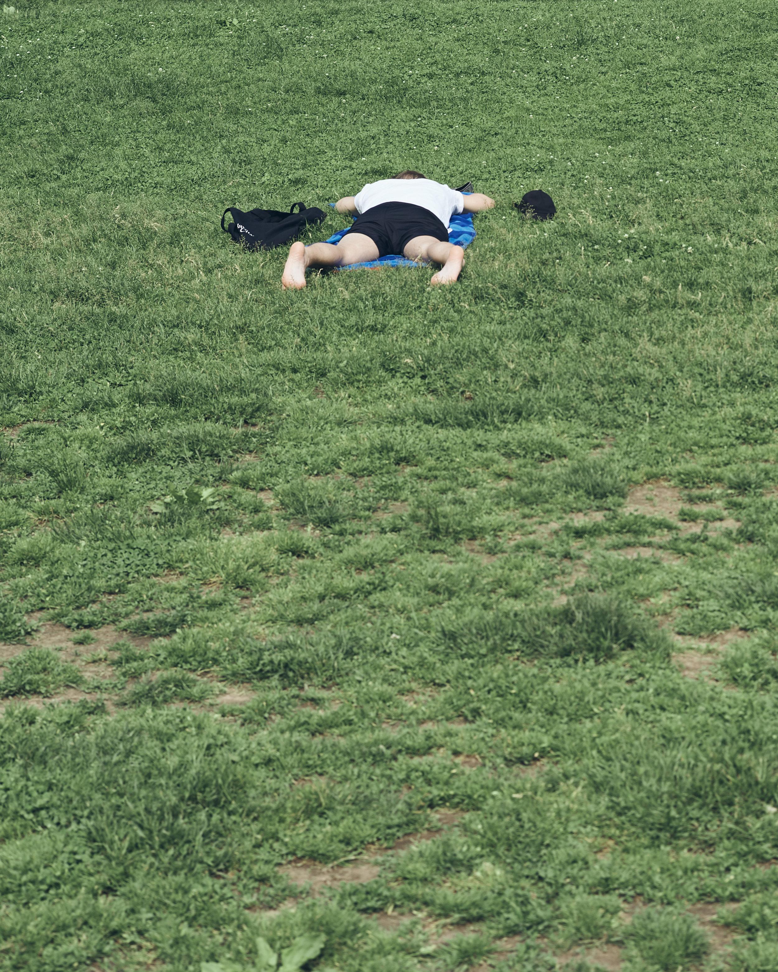 Grass18.jpg