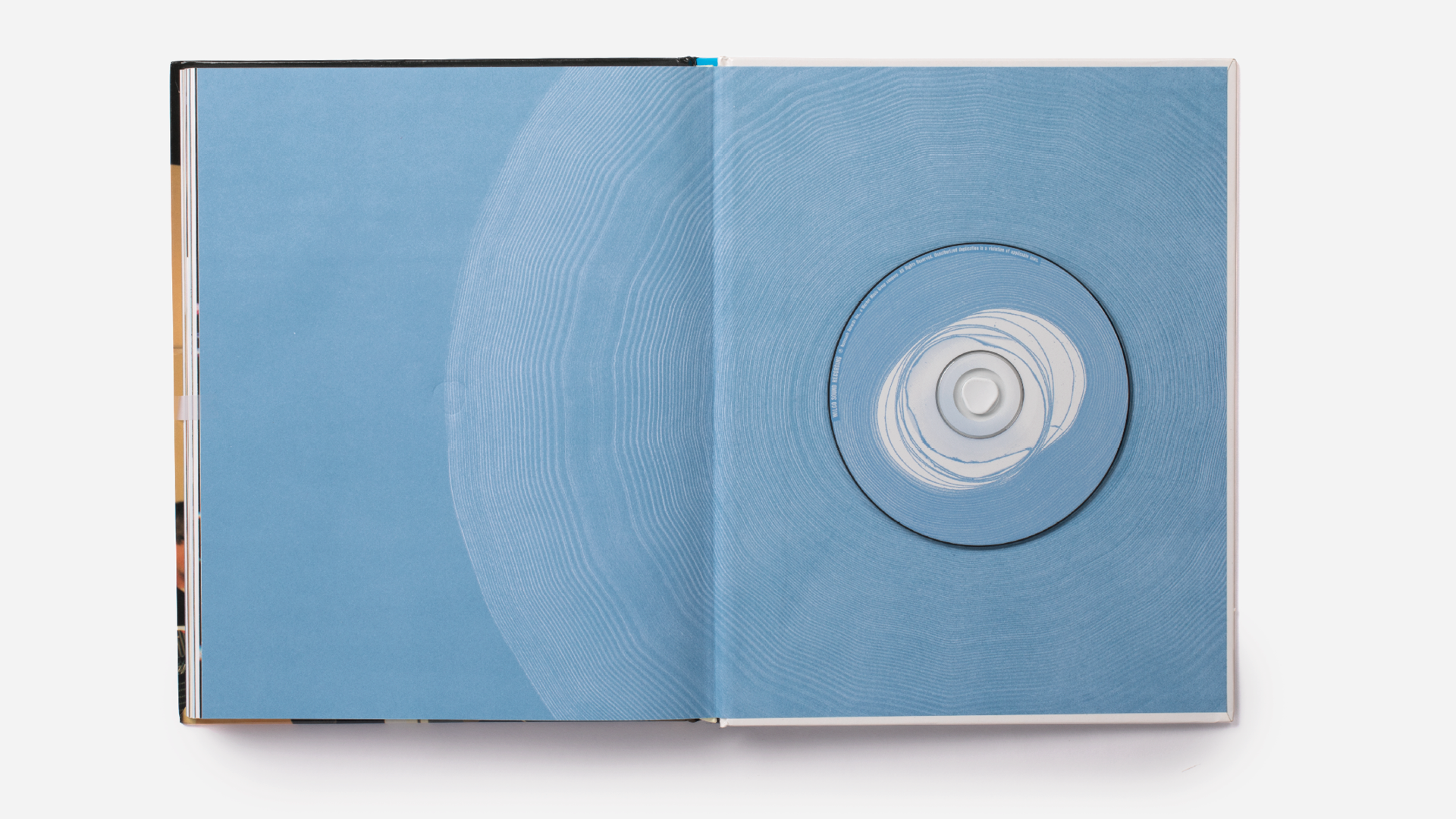WILCO-BOOK-PAGES10.png
