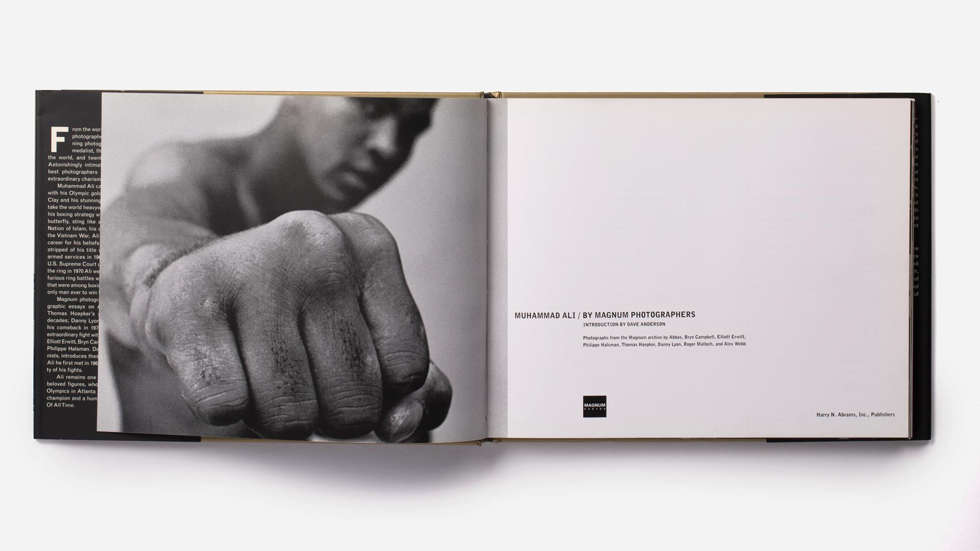 ALI-PAGES-v24.jpg