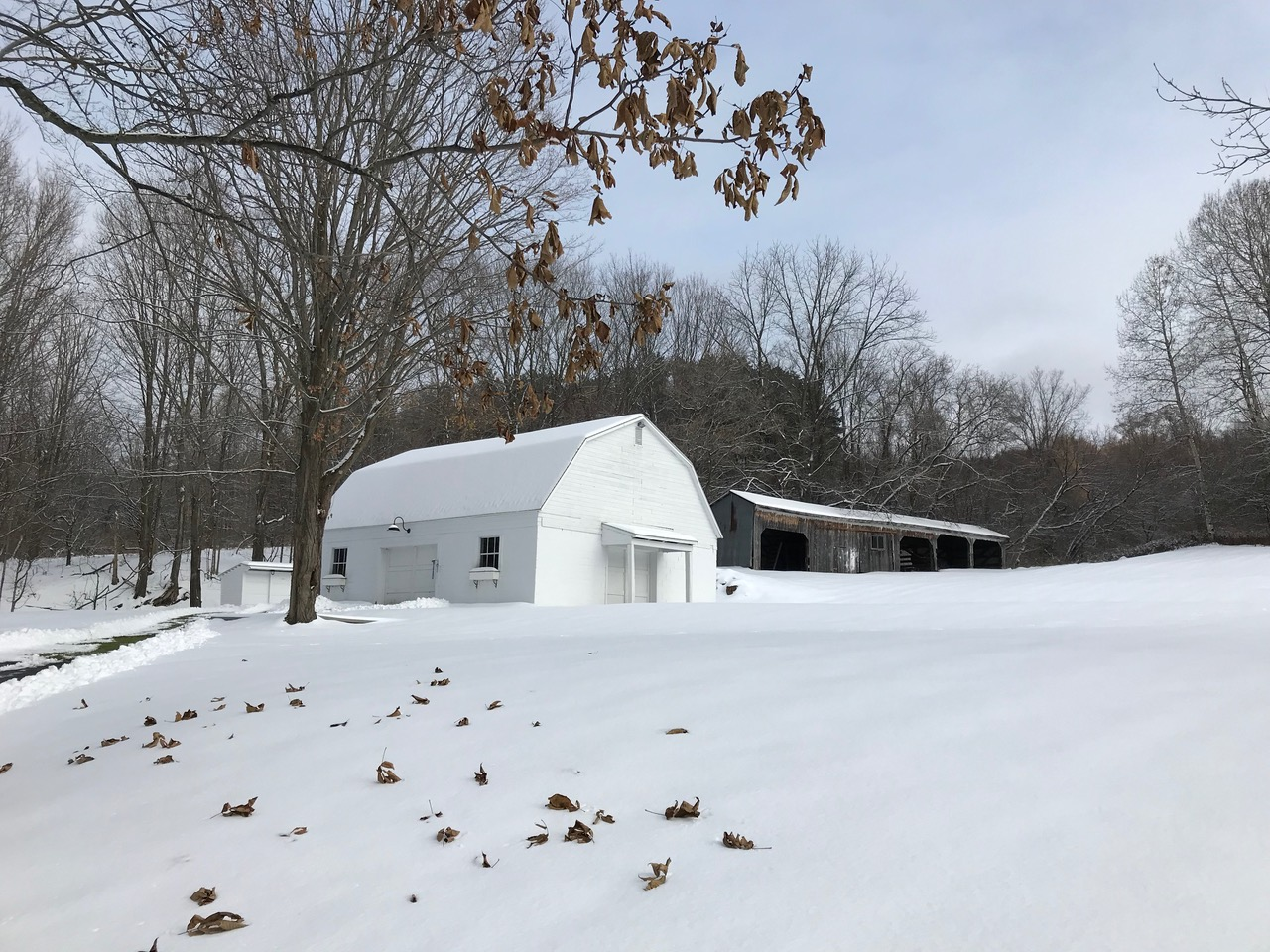 Barn in snow.jpeg