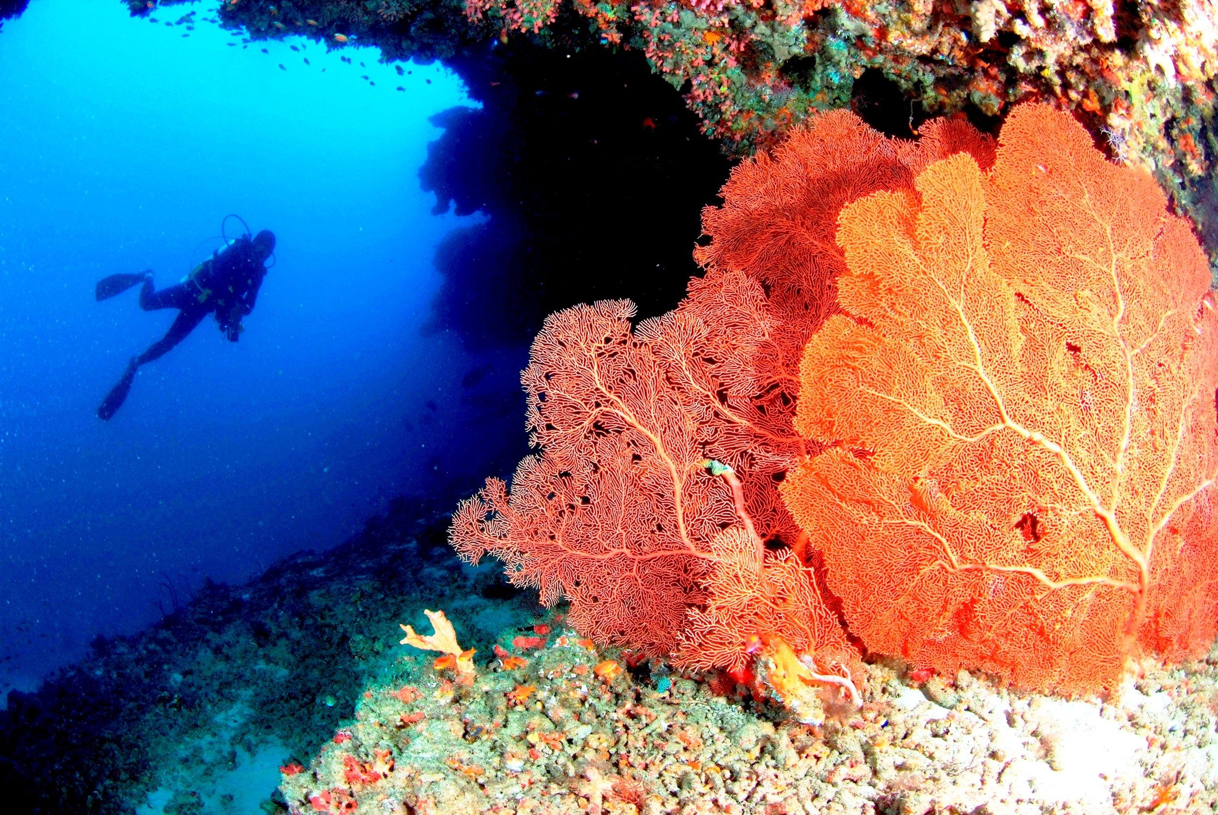 Anantara_Veli_Diving.JPG