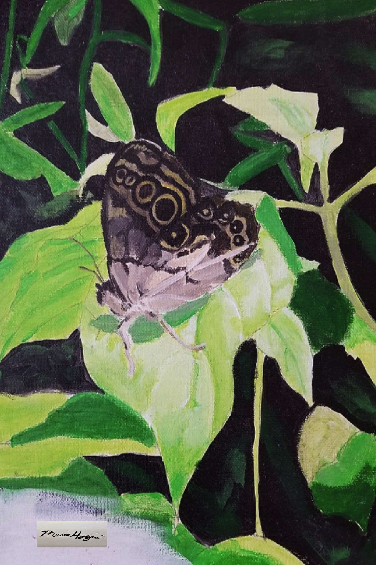 Destiny Butterfly - Check out product page for more nature print such as Destiny Butterfly.