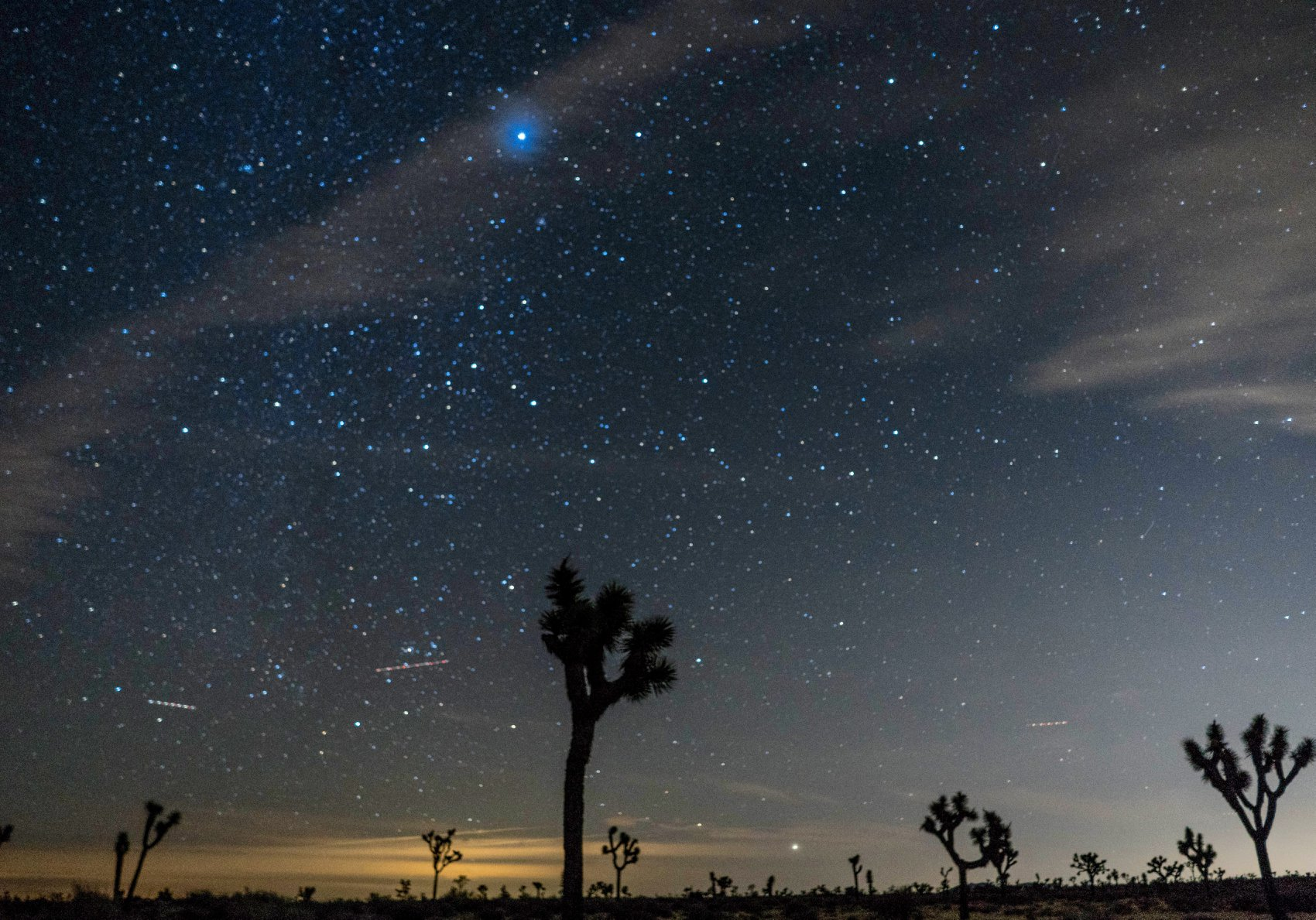 joshua tree night photography