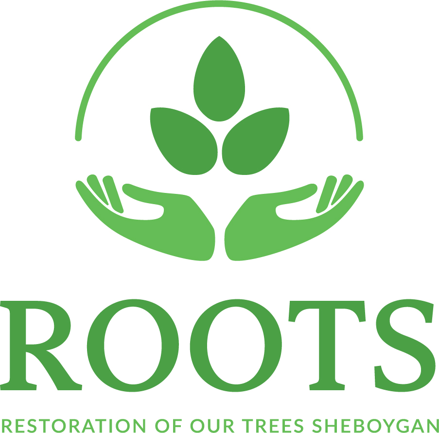 RESTORATION OF OUR TREES SHEBOYGAN