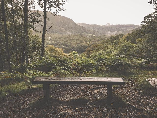 The kids are back at school and the new season has begun, for me anyway. There's something profound about this empty bench high above the lake this morning...I feel my heart returning ❣