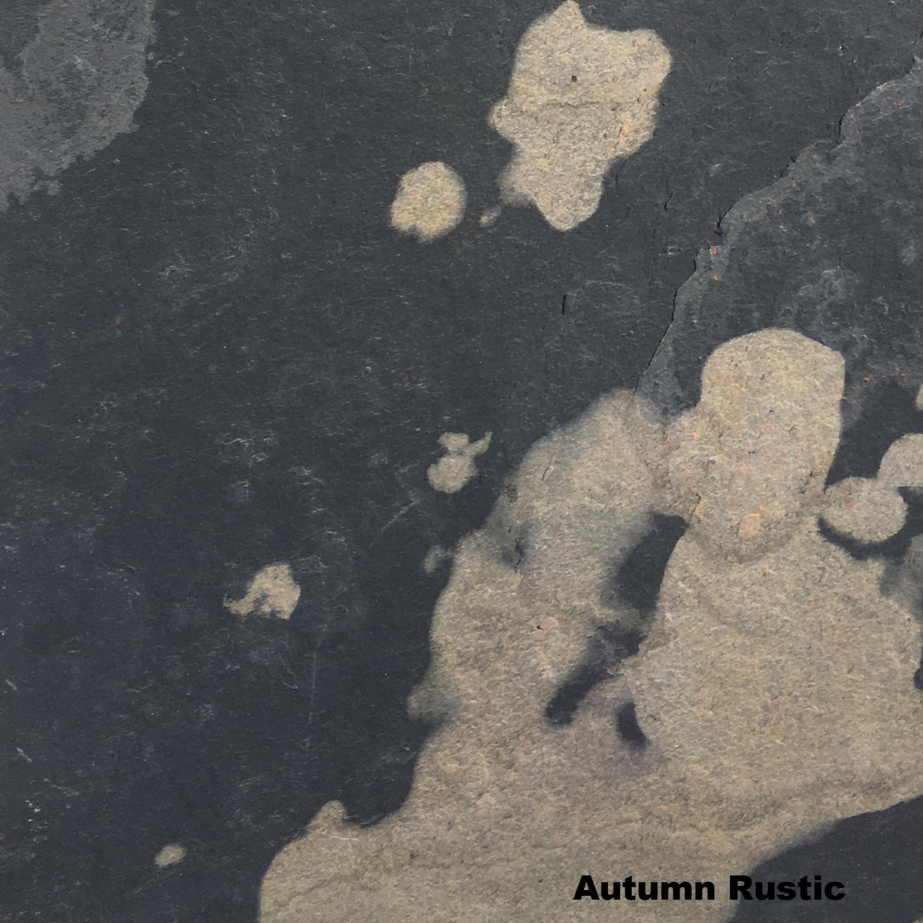 Autumn Rustic 170.JPG
