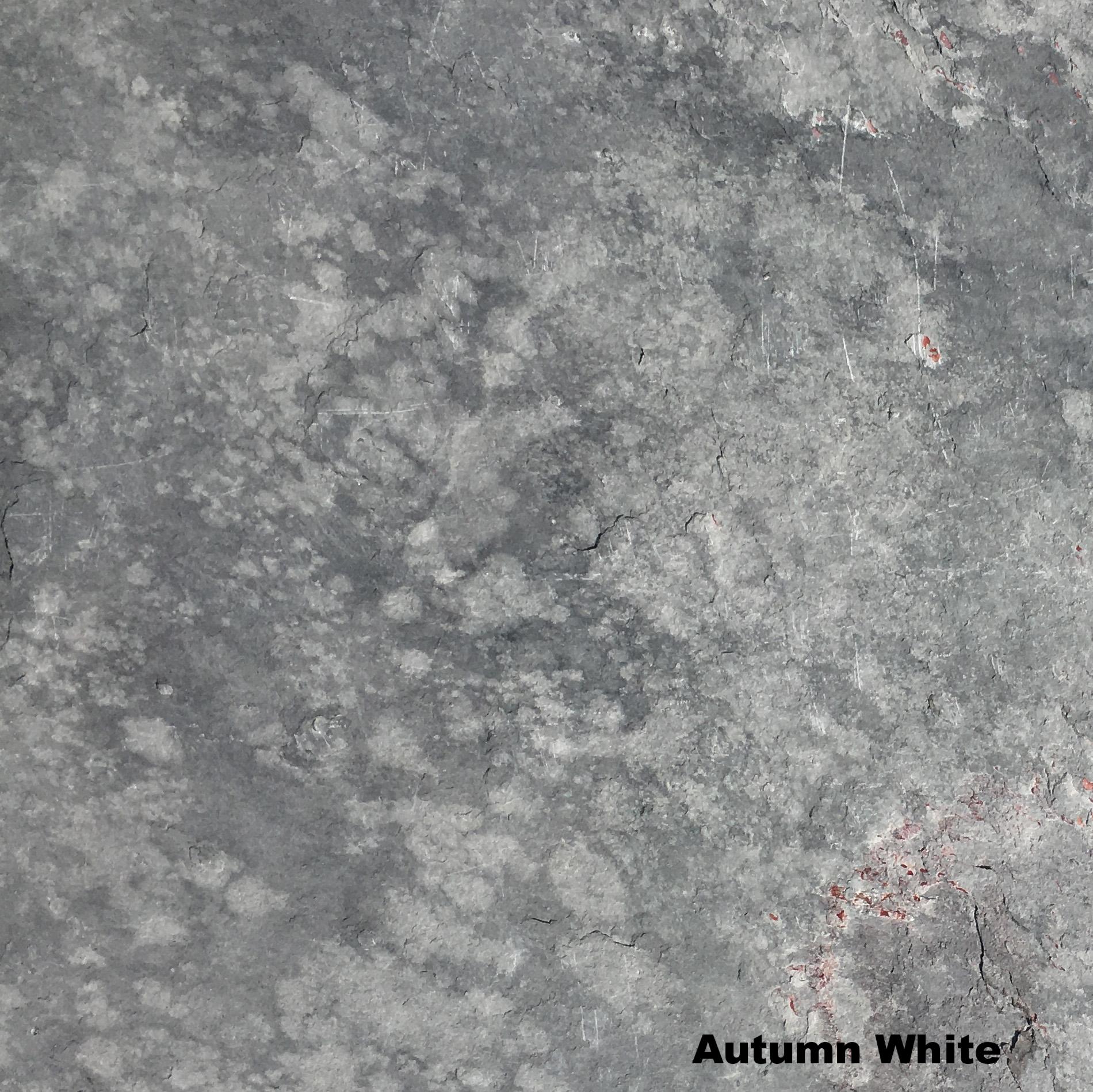 Autumn White 140.JPG