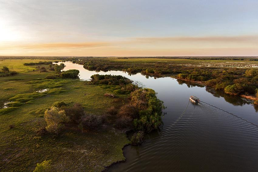 Wetland Criuse.jpg