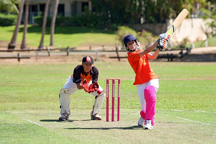 Cricket WB 05.jpg