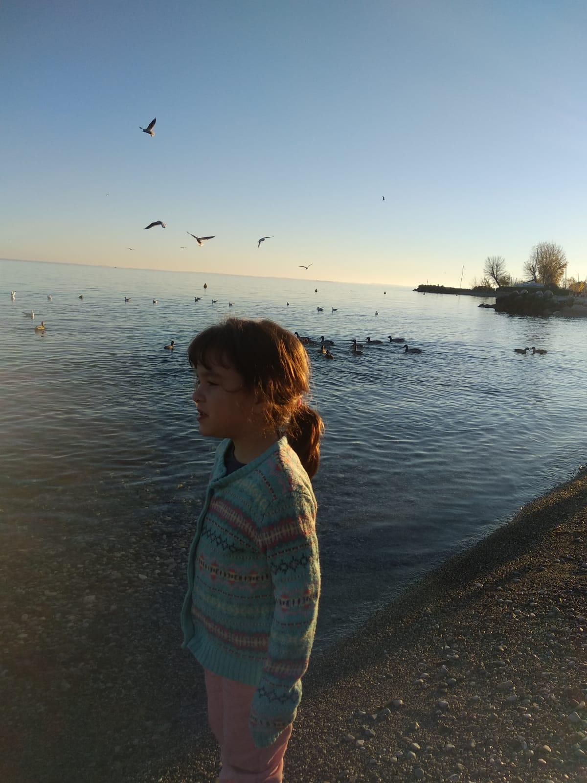 a-beach-in-garda-lake.JPG