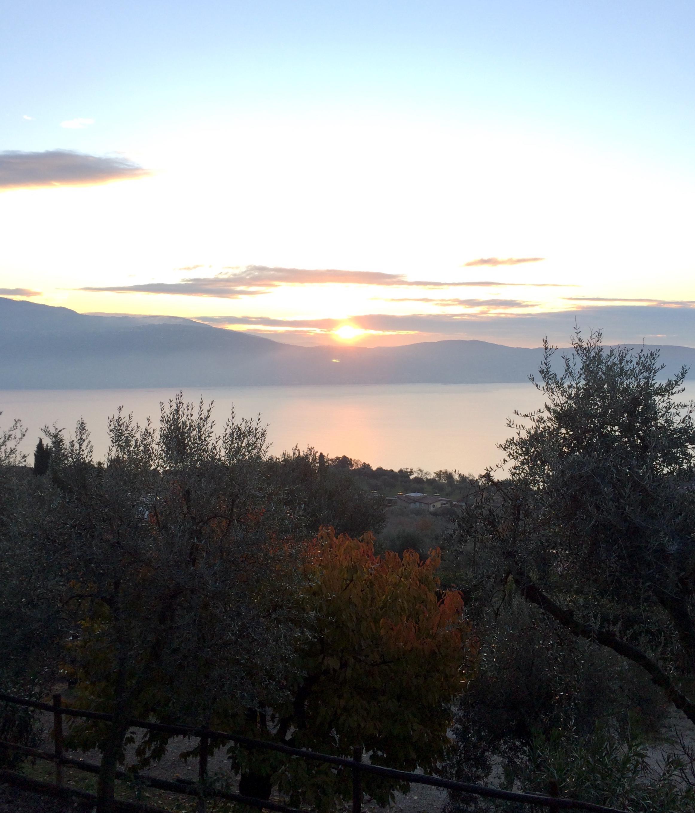 sunrise-scuderia.jpg
