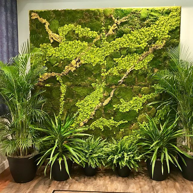 My moss wall and green plant set at a beautiful wedding at the Space Coast Association of Realtors venue in Palm Coast