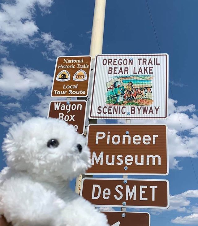 Pearl's road trip has taken her through TX, NM, CO, UT, ID, and now the Oregon Trail! 🐾 #pearlsroadtrip