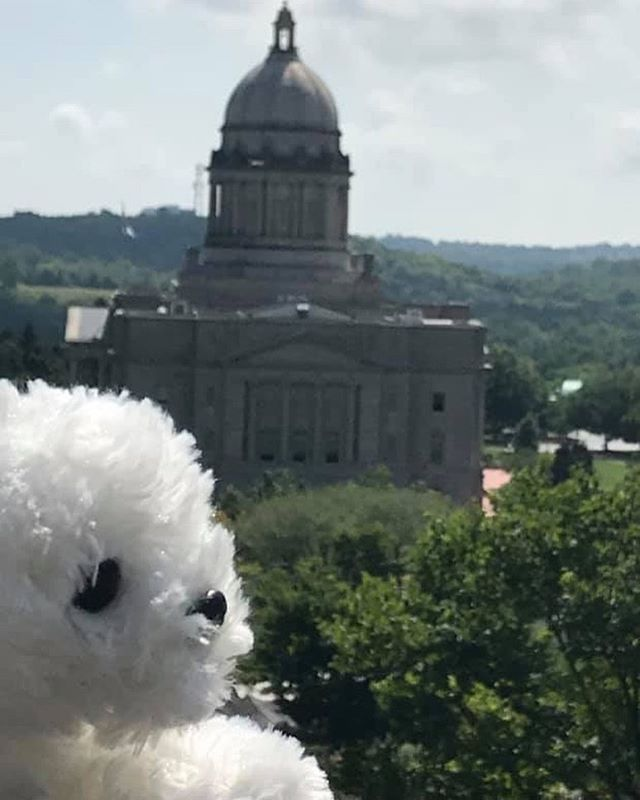 Having fun at the state capitol in Kentucky!! ❤️ 🐎 #pearlsroadtrip